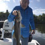 Dan Fish 1